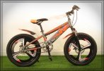"FOLDING 20"" bike grey-orange"